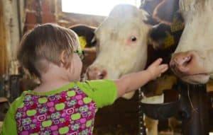 Kinder haben viel Spaß und erfahren viel Neues beim Urlaub auf dem Bauernhof
