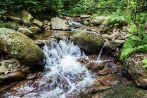 Das Ilsetal im Harz