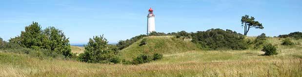 Insel Hiddensee - Dornbusch mit Leuchtturm