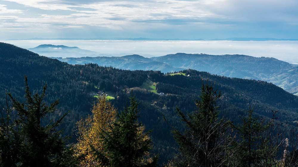 Schwarzwald Hornisgrinde