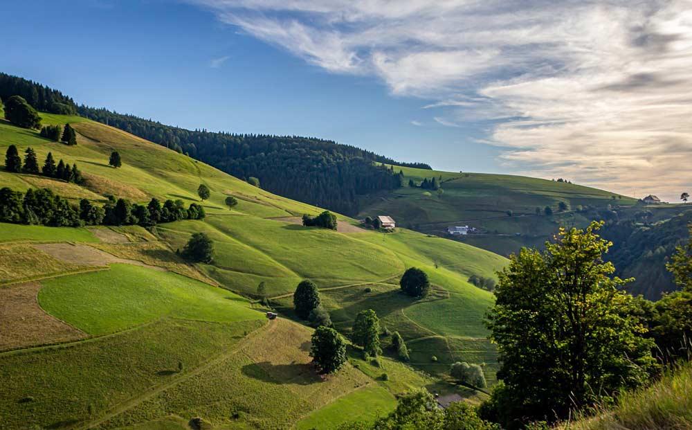 Die Vielfalt der Schwarzwald Landschaft