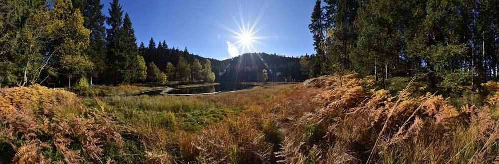 Auch Seen finden sich im Schwarzwald - hier der Buhlbachsee