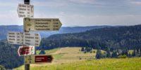 Wandern im Schwarzwald – die schönsten Wanderziele