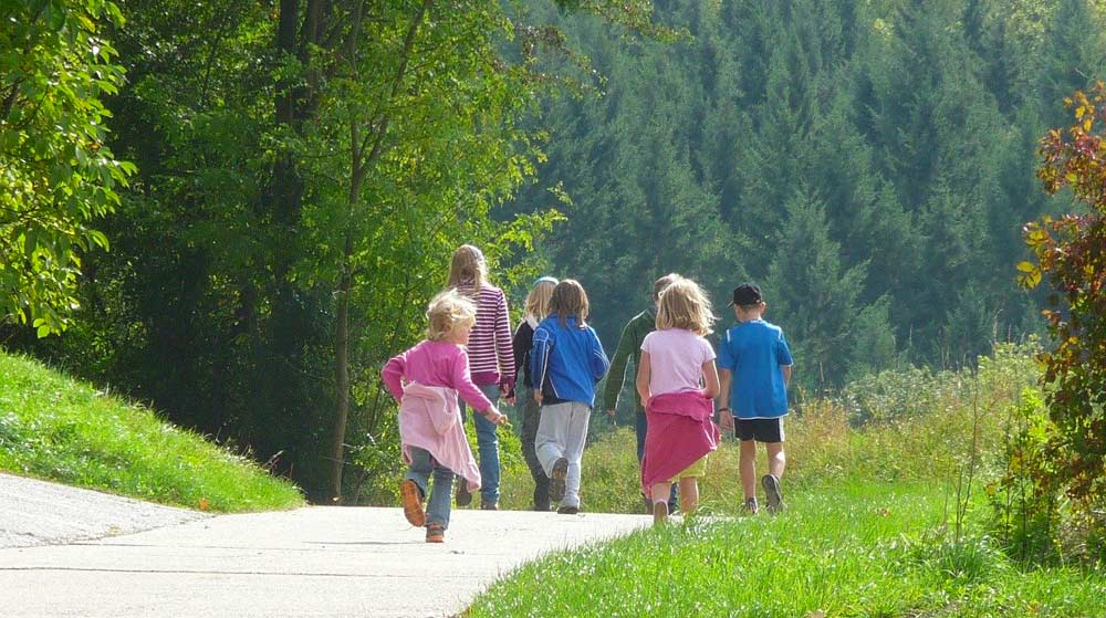 Familienwanderung durch den Schwarzwald